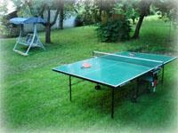 Ping pong, houpačka, zahrada